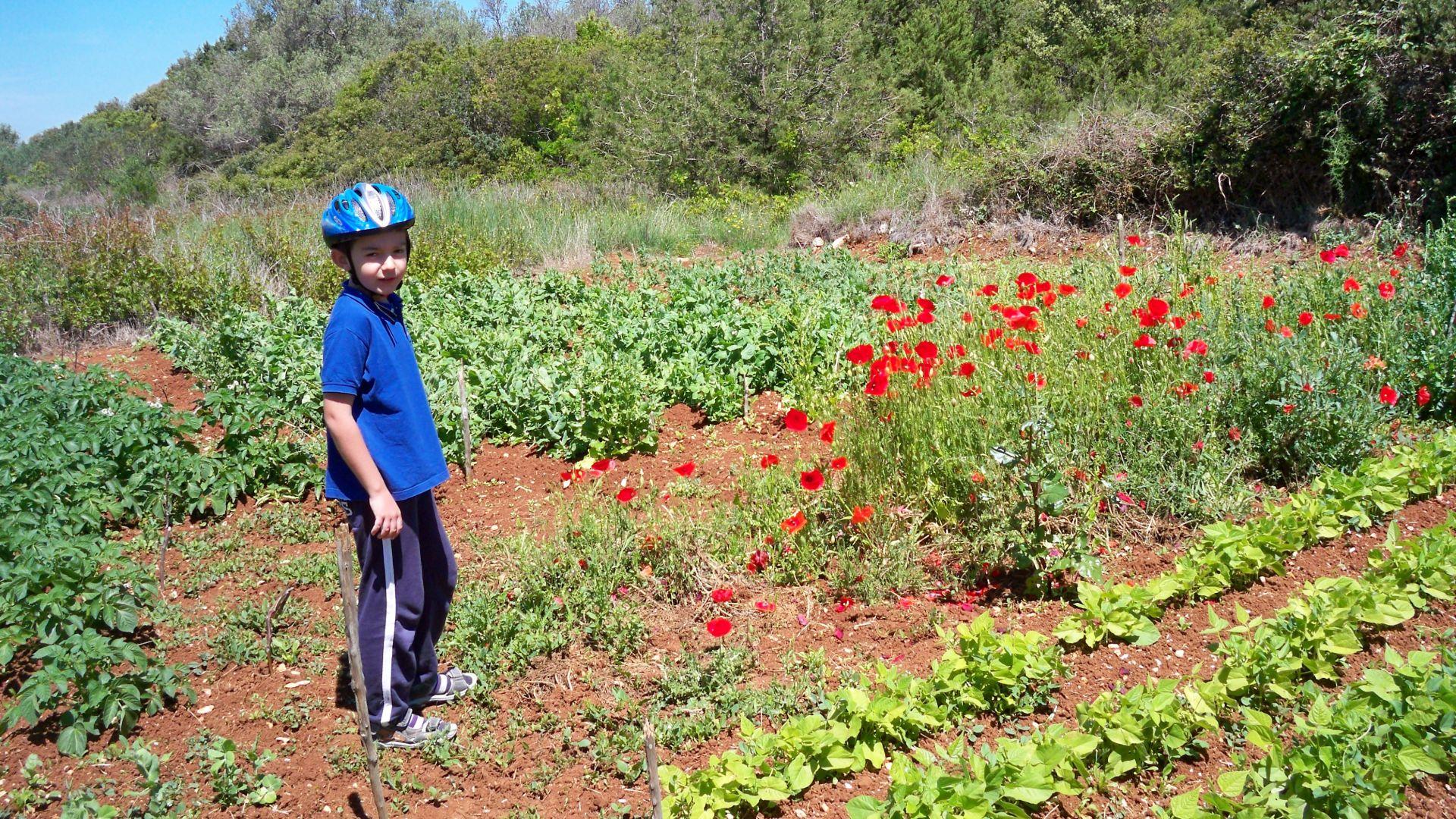 biking-dugi-otok-croatia (3)