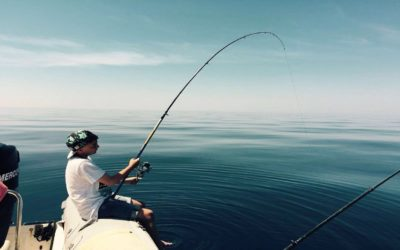 Fishing in Croatia on the island Dugi otok