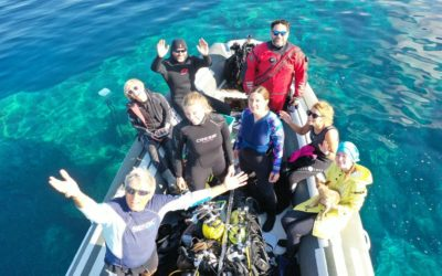 Diving research on the island of Dugi otok