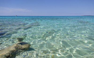7 jours à Dugi otok
